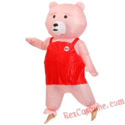 Top Quality Teddy Bear Inflatable Costume